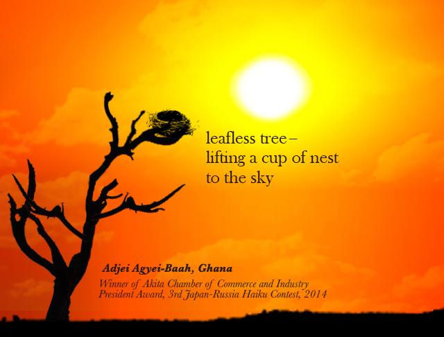 winning haiku by Adjei Agyei Baah Ghana (2)
