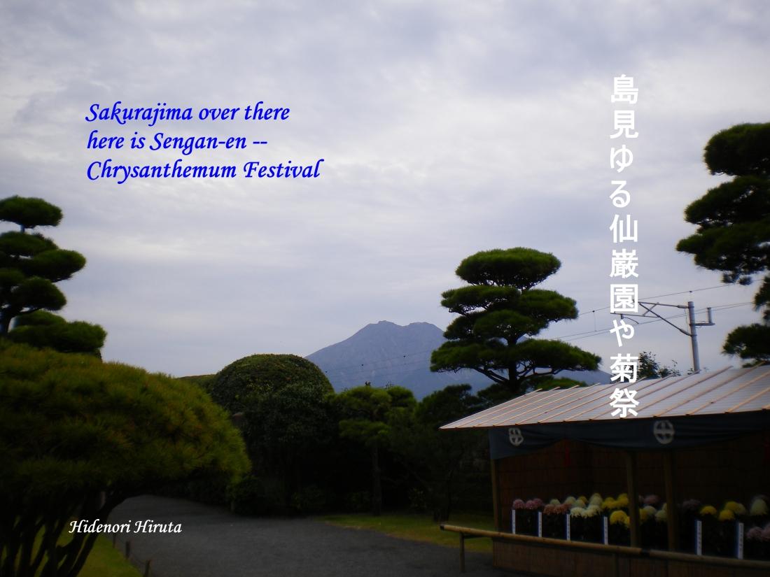 仙巌園菊祭り